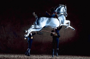 Entradas Cómo bailan los caballos andaluces