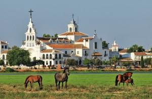 Escapada a Doñana para dos