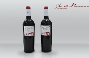 Caja de 6 botellas Ribera del Duero